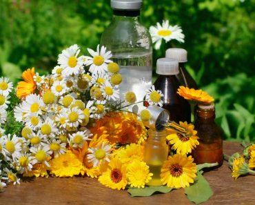 Лечение молочницы народными средствами в домашних условиях. Рецепты отваров и ванночек с содой