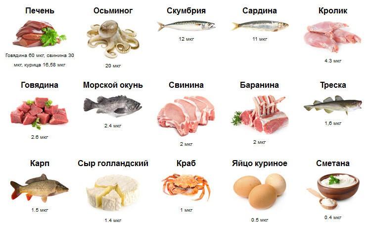Продукты в которых содержится витамин В12.