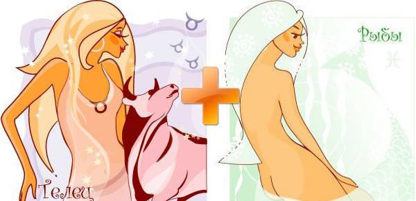 Телец и Рыбы - совместимость для мужчин и женщин в любви, браке, дружбе и работе