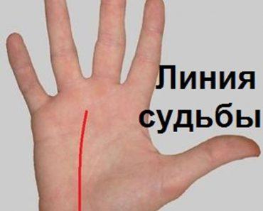 Линия судьбы на руке. Хиромантия