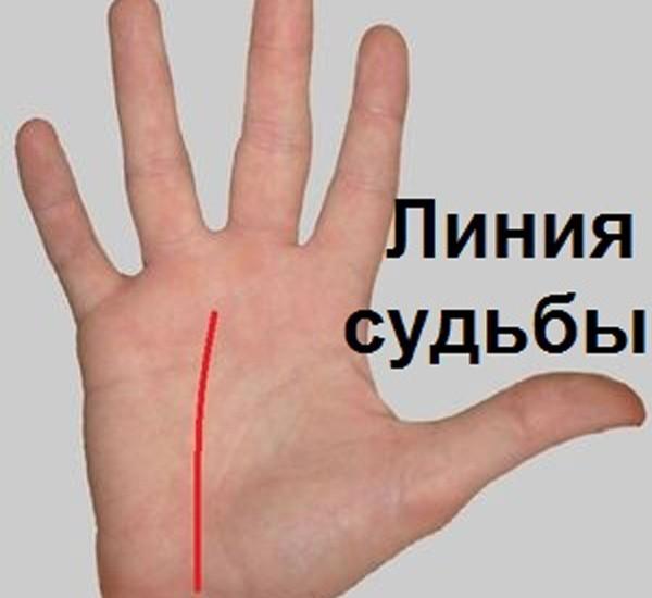 Гадание по линии судьбы на руке