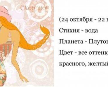 Скорпион - гороскоп совместимости и характеристика знака зодиака. Мужчина Скорпион. Женщина Скорпион
