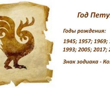 Знак Петуха - характеристика человека (мужчины и женщины), рожденных в этот год. Восточный гороскоп