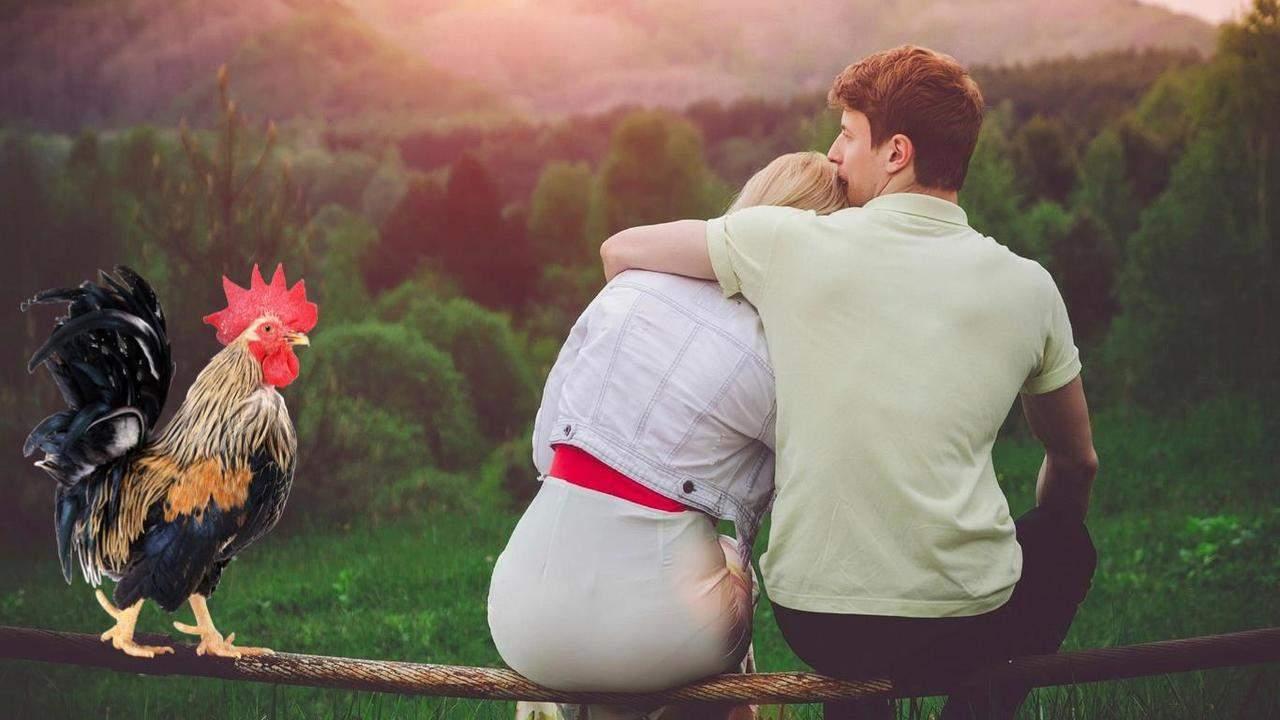 Год Петуха и любовь, личная жизнь, отношения