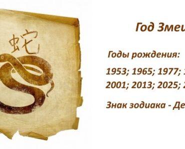 Знак Змеи - характеристика человека (мужчины и женщины), рожденных в этот год. Восточный гороскоп