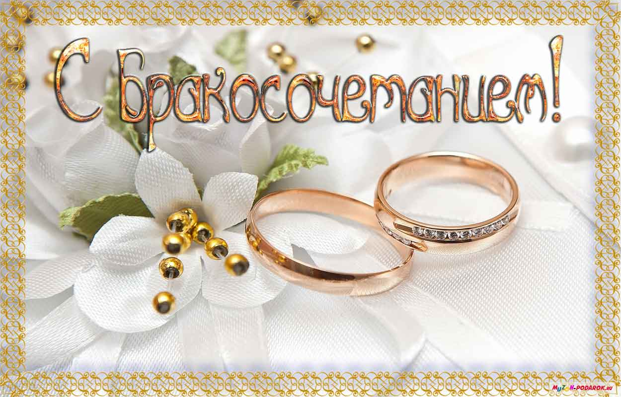 Поздравление молодым с законным браком