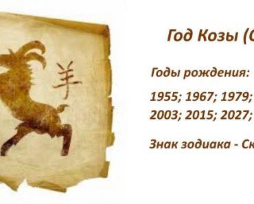 Знак Коза (Овца) - характеристика человека (мужчины и женщины), рожденных в год Козы (Овцы). Восточный гороскоп