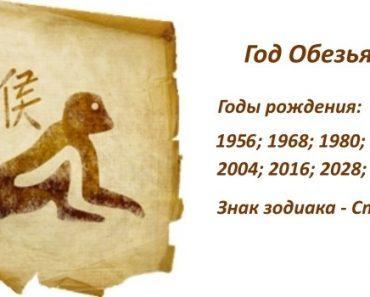 Знак Обезьяна - характеристика человека (мужчины и женщины), рожденных в год Обезьяны. Восточный гороскоп