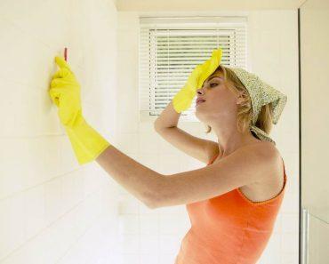 Как избавиться от плесени в квартире, в доме, в ванной, на стенах и от запаха своими руками. Фото, видео