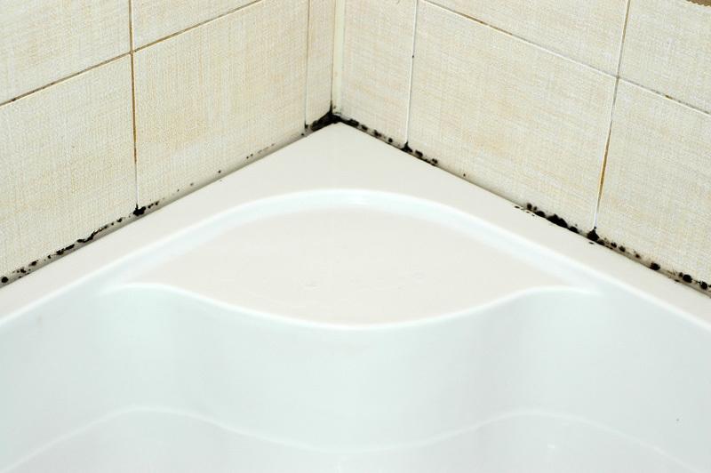 Черная плесень в акриловой ванной как бороться своими руками 50