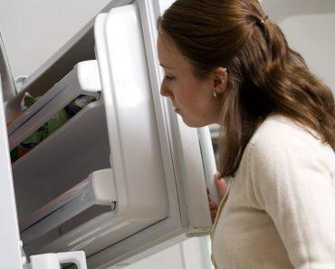 Неприятный запах в холодильнике: как от него быстро избавиться и убрать навсегда в домашних условиях. Поглотитель запаха и другие средства для его устранения