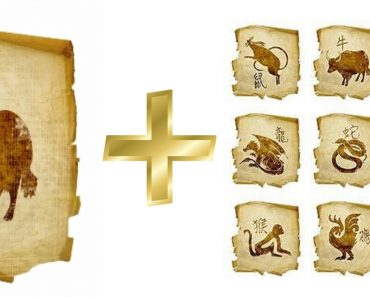 Бык (Вол): гороскоп совместимости мужчины и женщины в любви с другими знаками. Бык и Тигр, Крыса, Свинья, Собака, Лошадь, Петух, Обезьяна, Коза (Овца), Змея, Дракон, Кролик, Бык