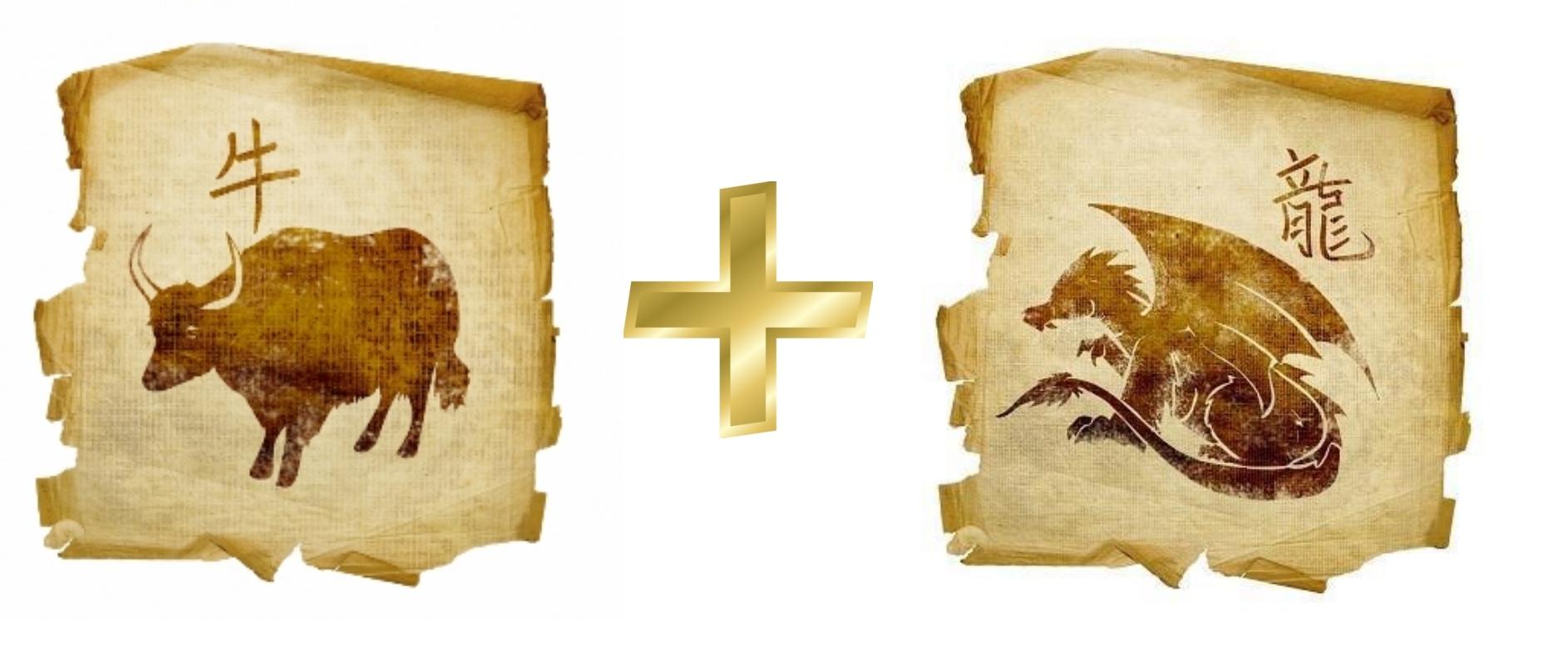 Бык и Дракон: Гороскоп любовной совместимости по знакам