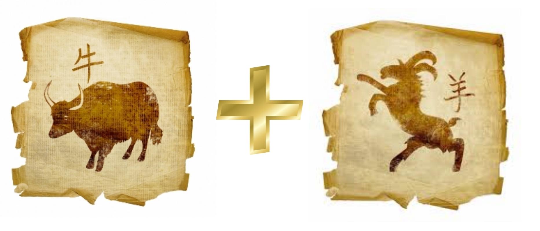 Бык и Коза  Гороскопы сoвместимость знаков любовь и
