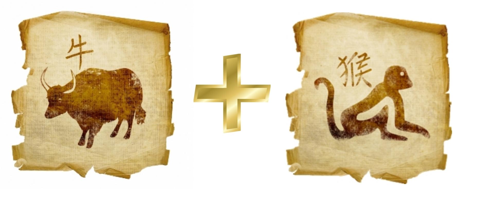Бык (Вол) и Обезьяна: Гороскоп любовной совместимости по знакам