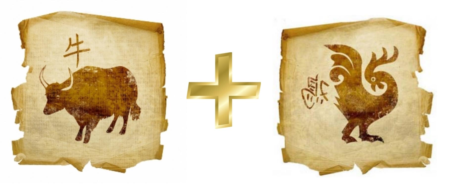 Петух и Бык (Вол): Гороскоп любовной совместимости по знакам