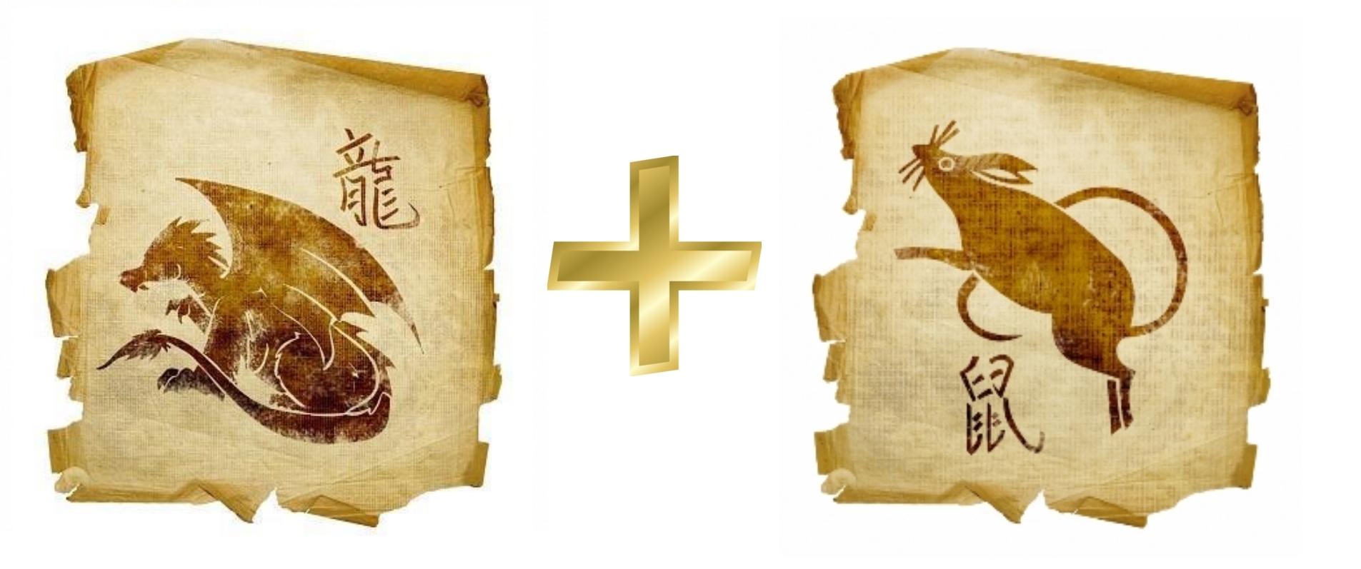 Дракон и Крыса (Мышь): гороскоп совместимости в любви