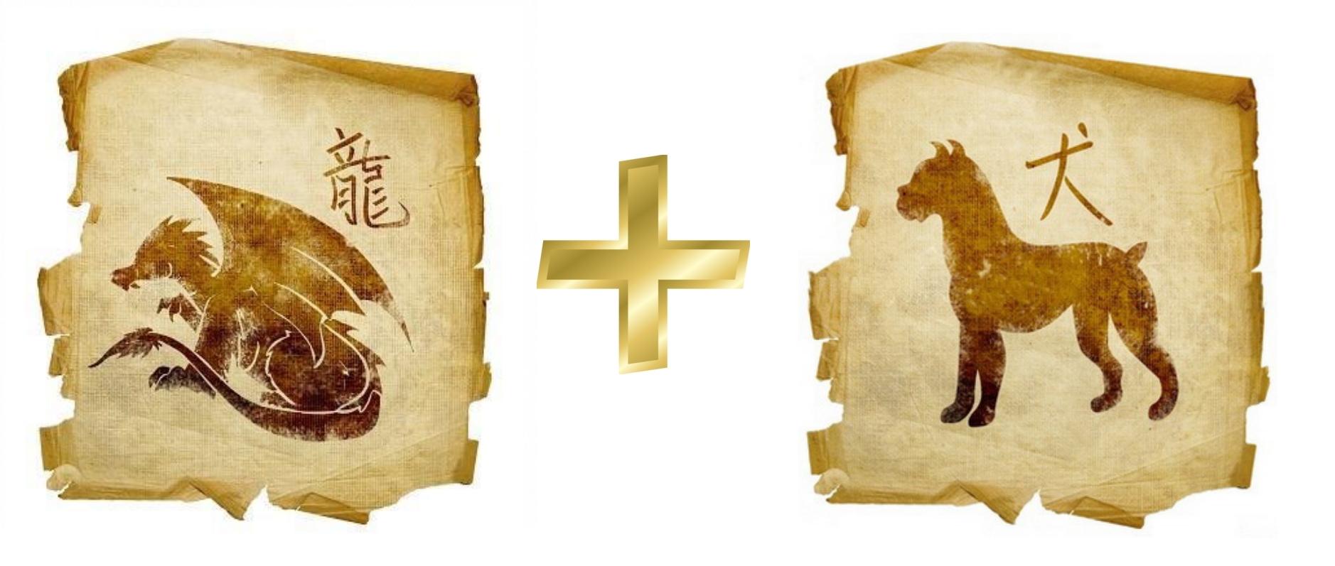 Дракон и Собака: гороскоп совместимости в любви