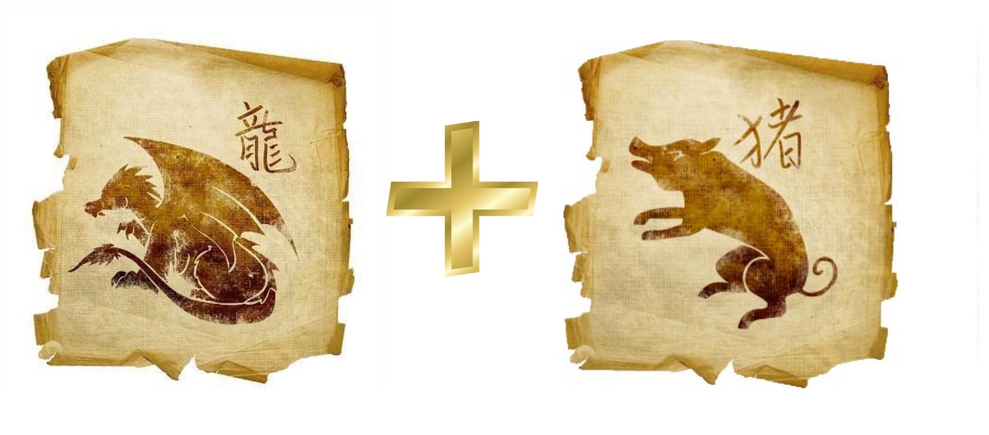 Дракон и Свинья (Кабан): гороскоп совместимости в любви