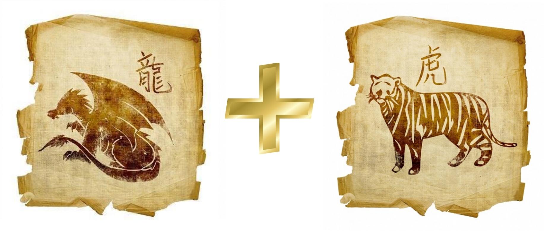 Дракон и Тигр: гороскоп совместимости в любви