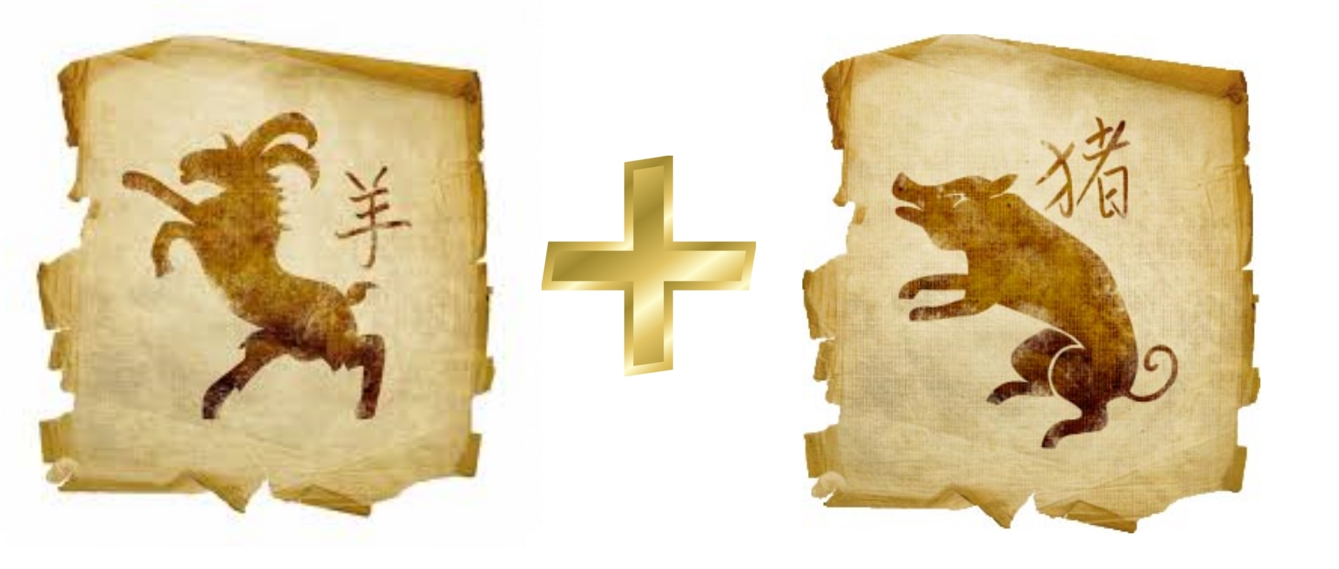 Коза (Овца) и Свинья (Кабан): гороскоп совместимости в любви
