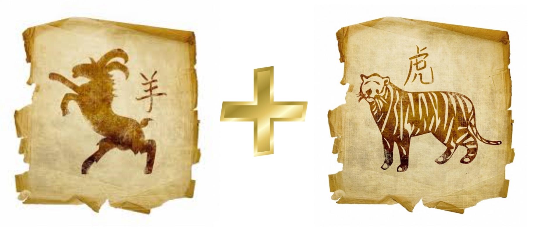 Коза (Овца) и Тигр: гороскоп совместимости в любви