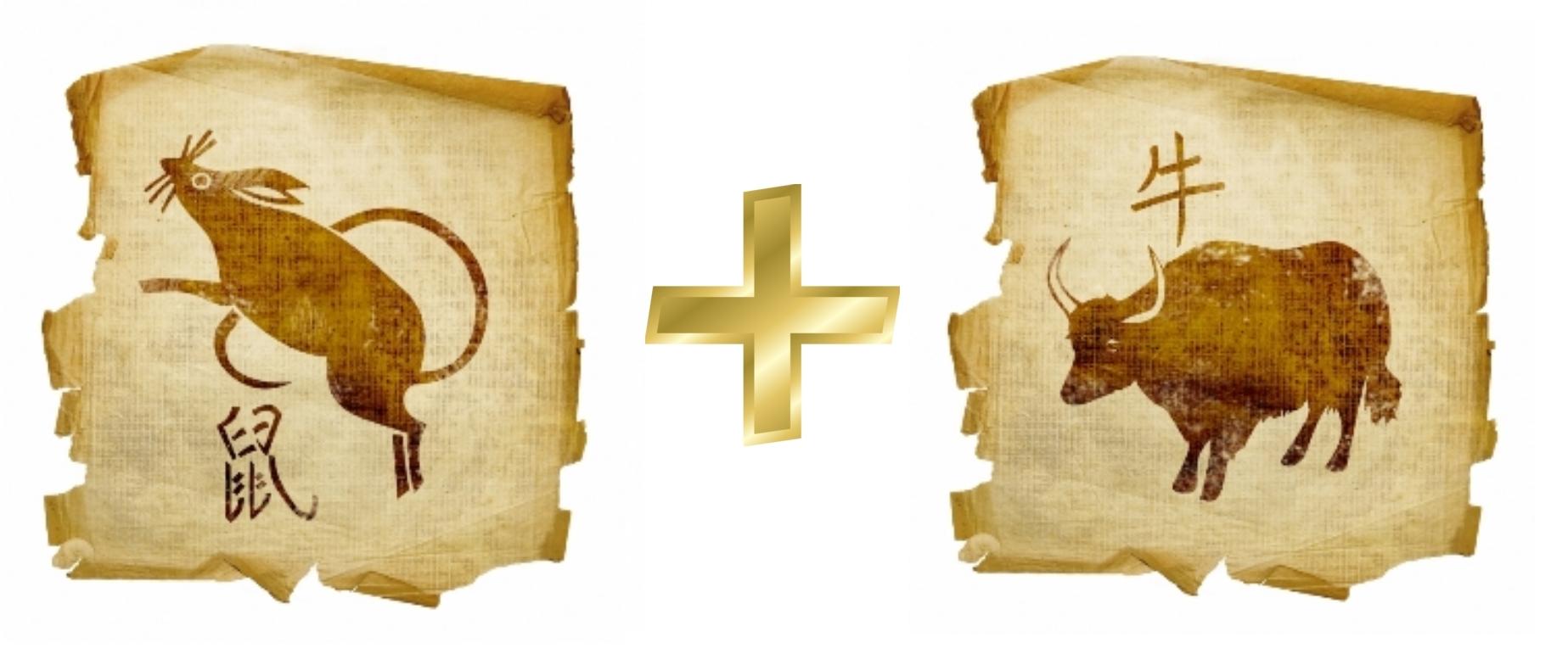 Крыса и Бык, Вол: Гороскоп любовной совместимости по знакам