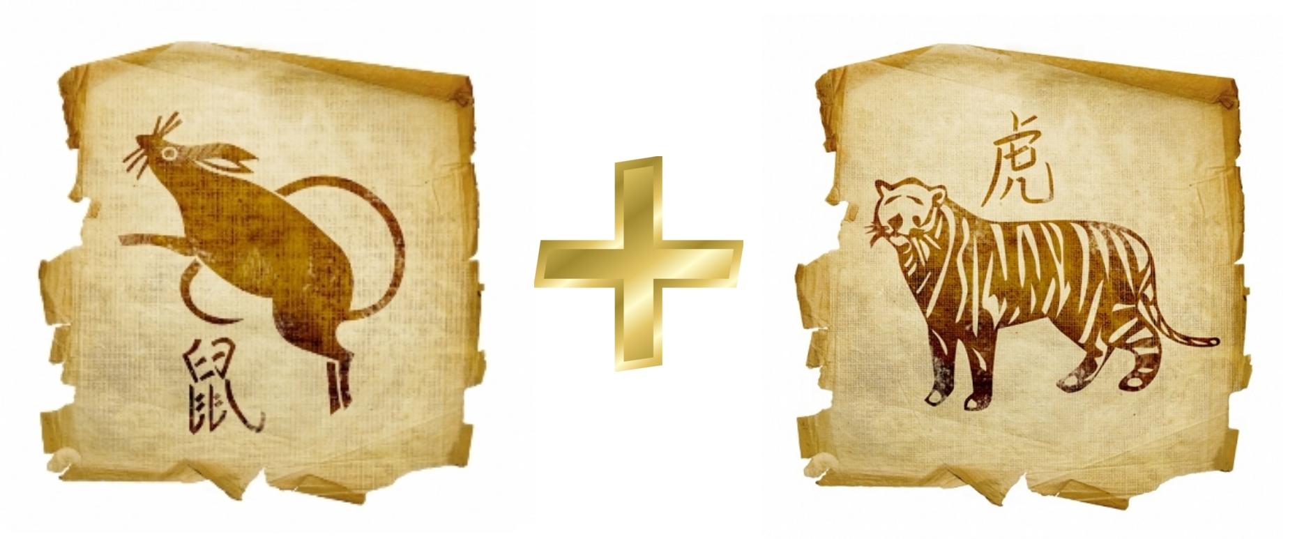 Крыса и Тигр: Гороскоп любовной совместимости по знакам
