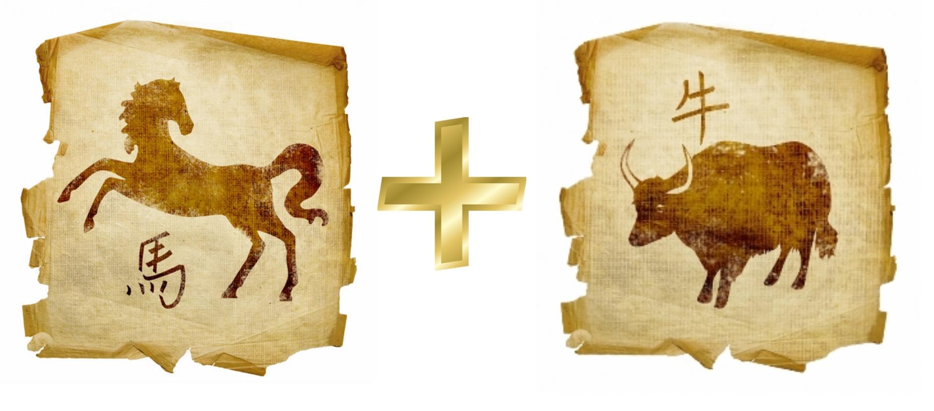Лошадь и Бык: гороскоп совместимости в любви
