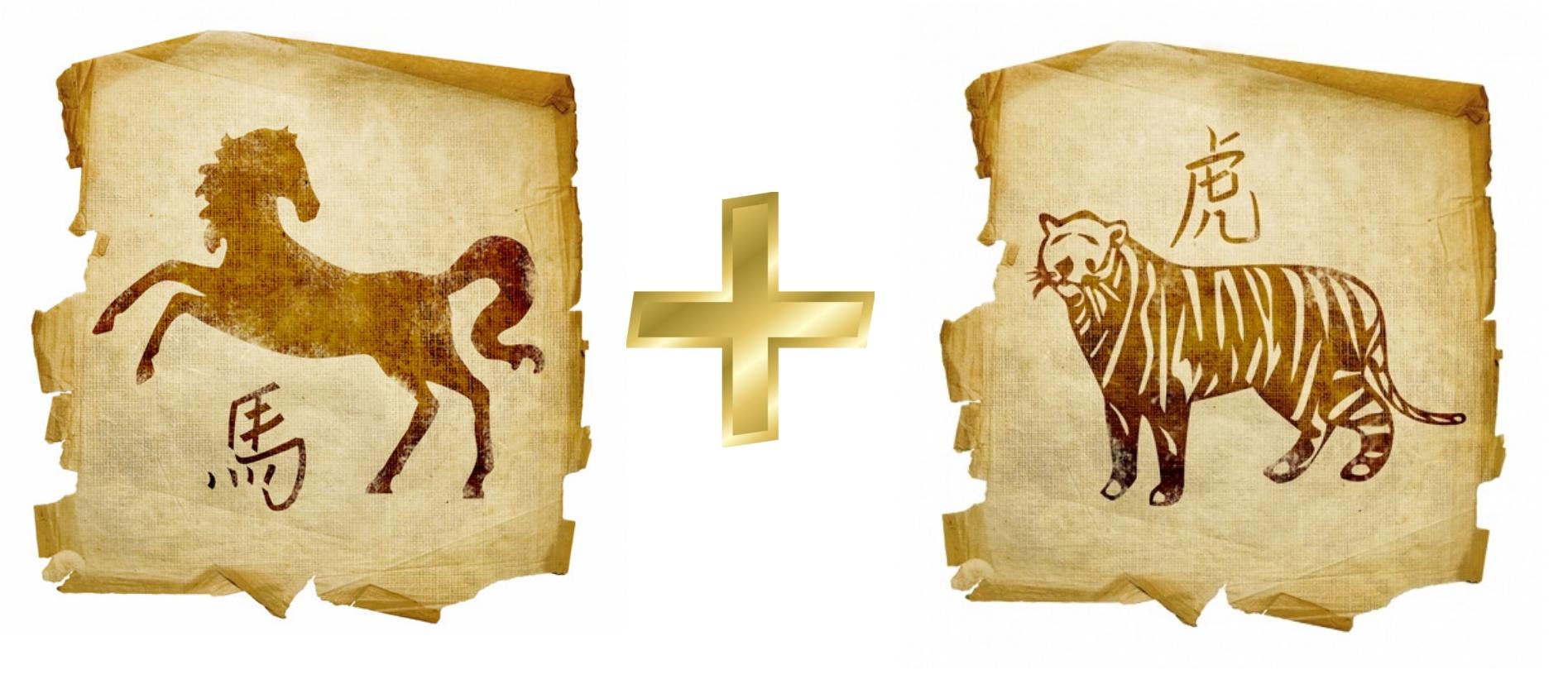 Лошадь и Тигр: гороскоп совместимости в любви