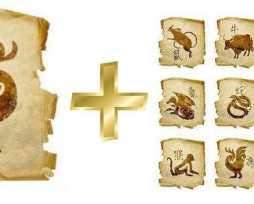 Петух: гороскоп совместимости мужчины и женщины в любви с другими знаками. Петух и Тигр, Крыса, Свинья, Собака, Лошадь, Петух, Обезьяна, Коза (Овца), Змея, Дракон, Кролик, Бык