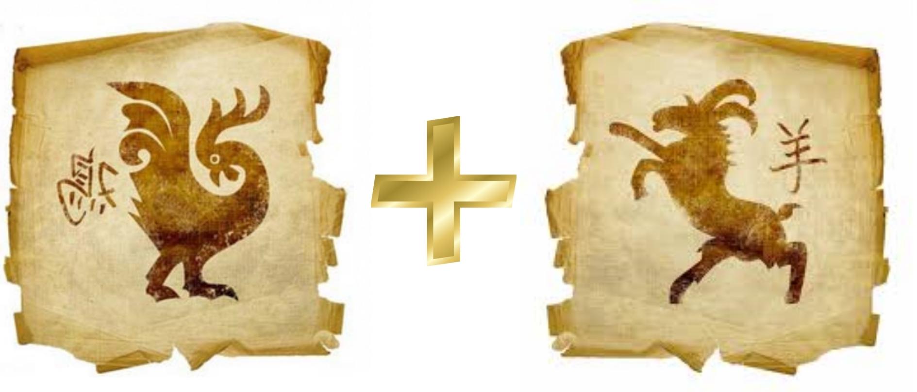 Петух: гороскоп совместимости мужчины и женщины в любви с другими знаками