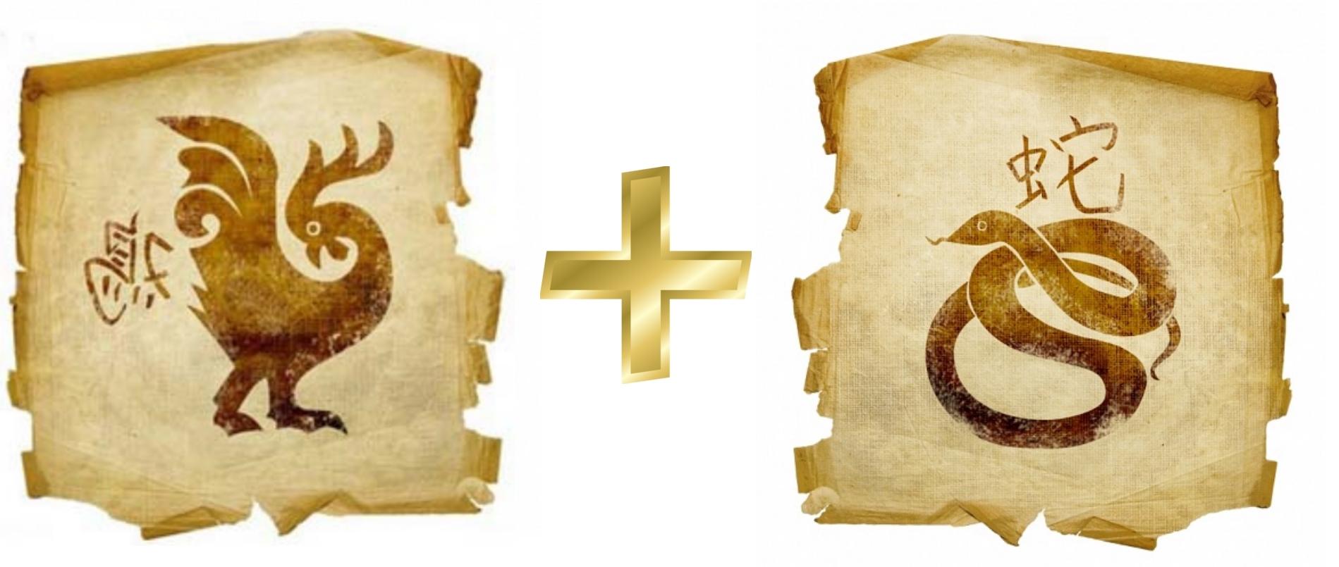 Петух и Змея: Гороскоп любовной совместимости по знакам
