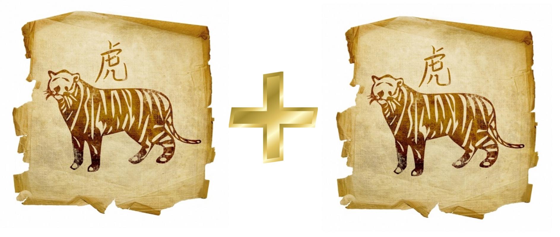 Гороскоп совместимости Тигра и Тигра в любви