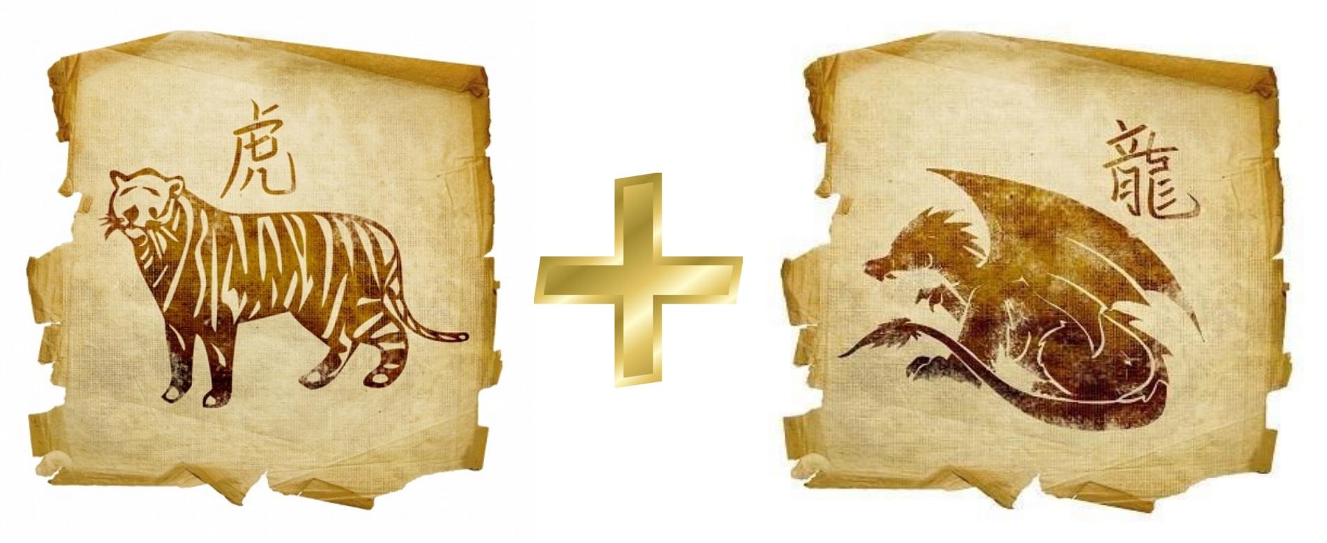 Тигр и Дракон: гороскоп совместимости в любви
