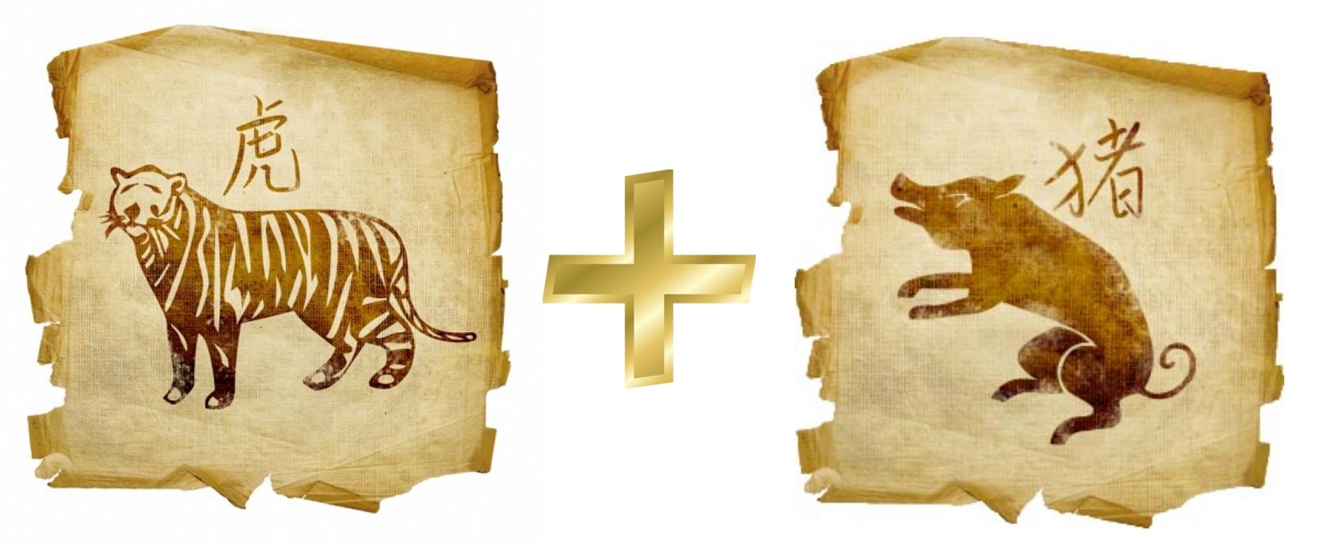 Тигр и кабан (Свинья0: гороскоп совместимости в любви