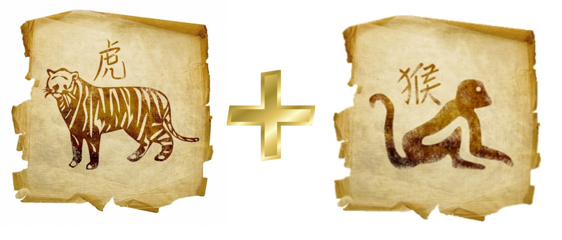 Тигр и Обезьяна: совместимость в любви, гороскоп совместимости