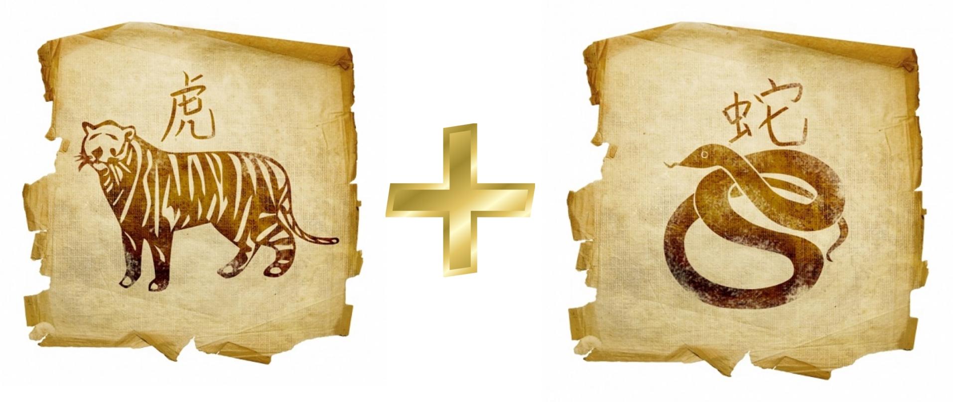Тигр и Змея: гороскоп совместимости в любви