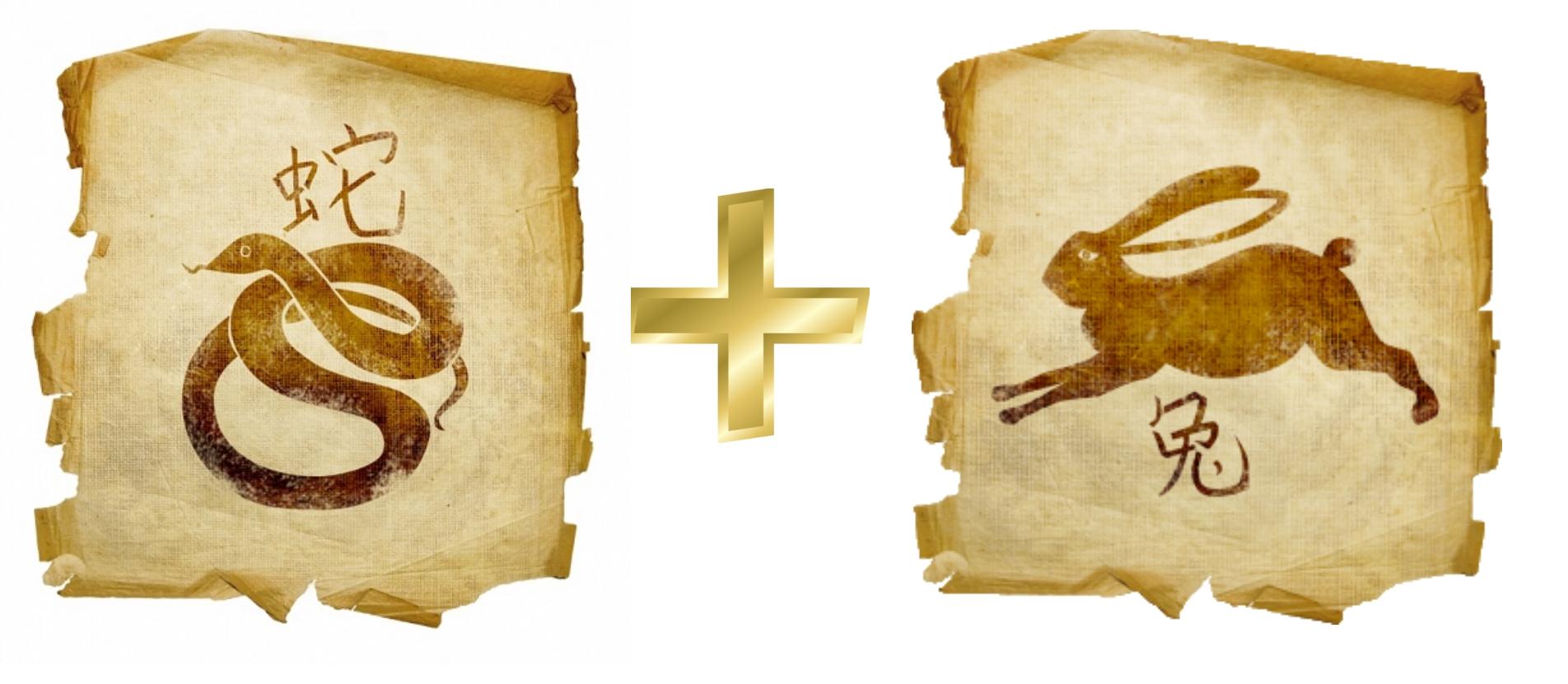 Змея и Кролик, Заяц, Кот: гороскоп совместимости в любви