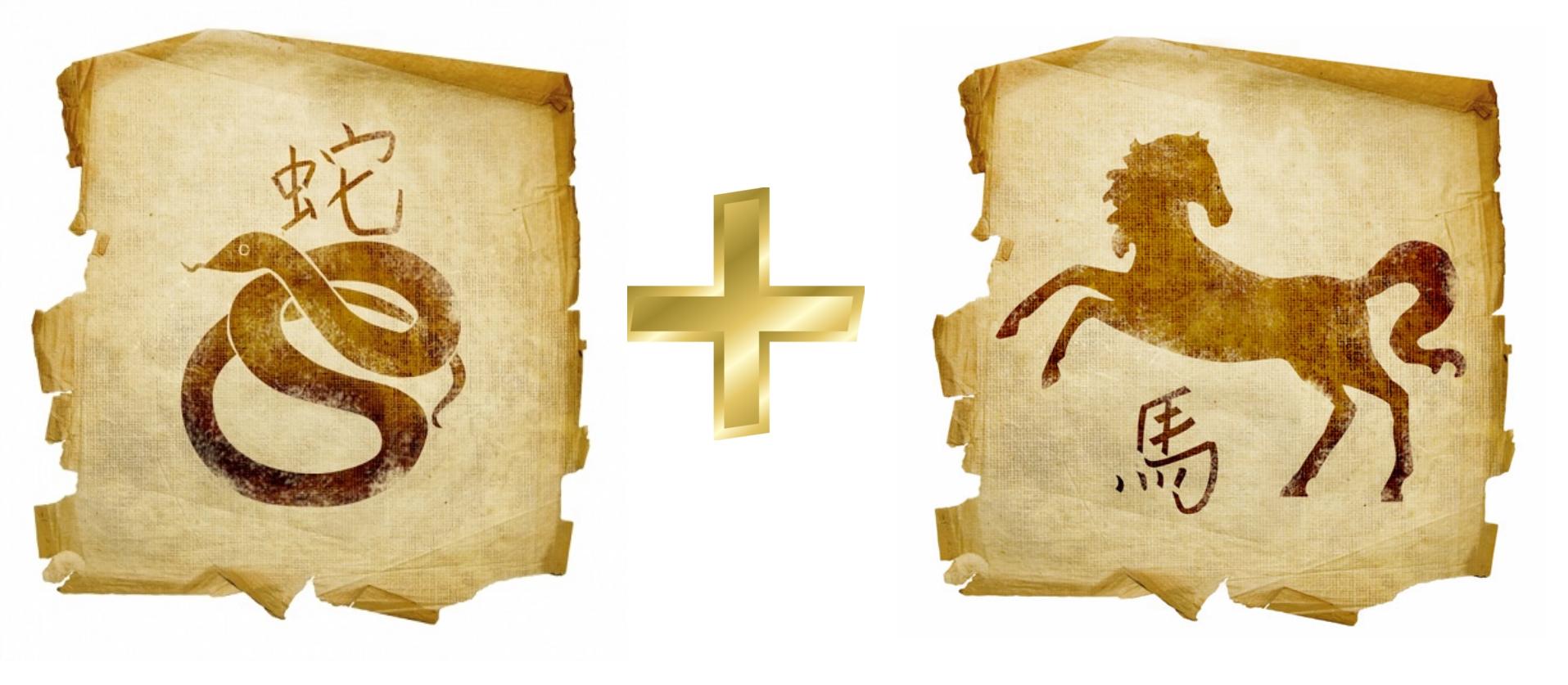 Змея и Лошадь, Конь: гороскоп совместимости в любви