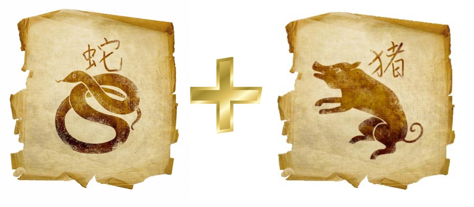 Змея и Свинья, Кабан: гороскоп совместимости в любви