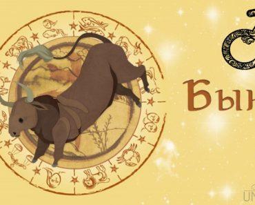 Мужчина Бык (Вол) в любви. Характеристика и гороскоп рожденных в этот год