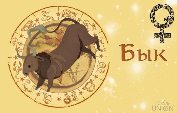 Женщина Бык (Вол) в любви. Характеристика и гороскоп рожденных в этот год