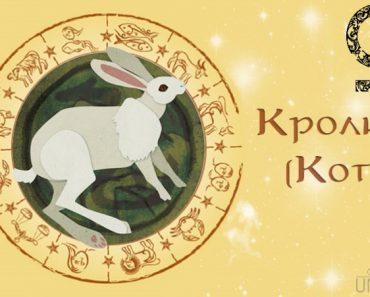 Женщина Кролик (Заяц, Кот) в любви. Характеристика и гороскоп рожденных в этот год
