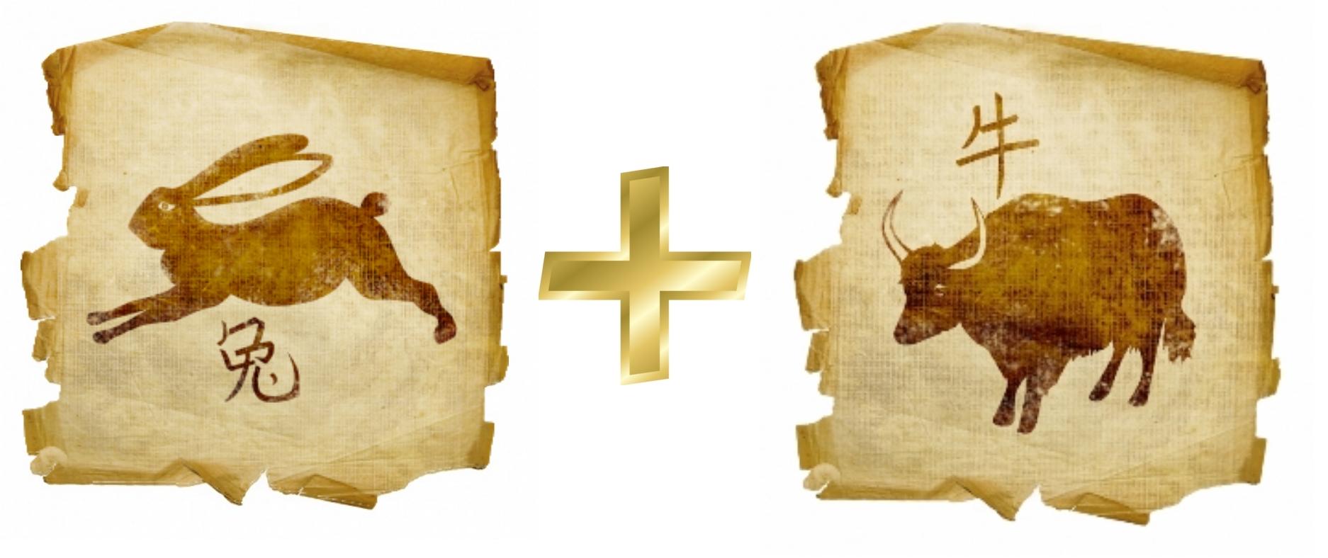 Кролик и Бык (Вол): гороскоп совместимости в любви