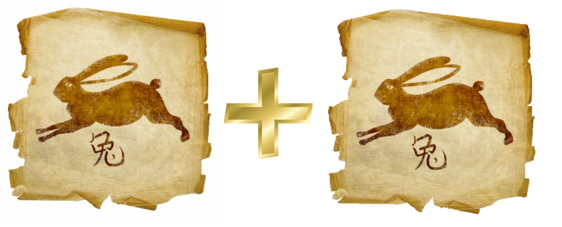Кролик и Кролик(Заяц, Кот): гороскоп совместимости в любви
