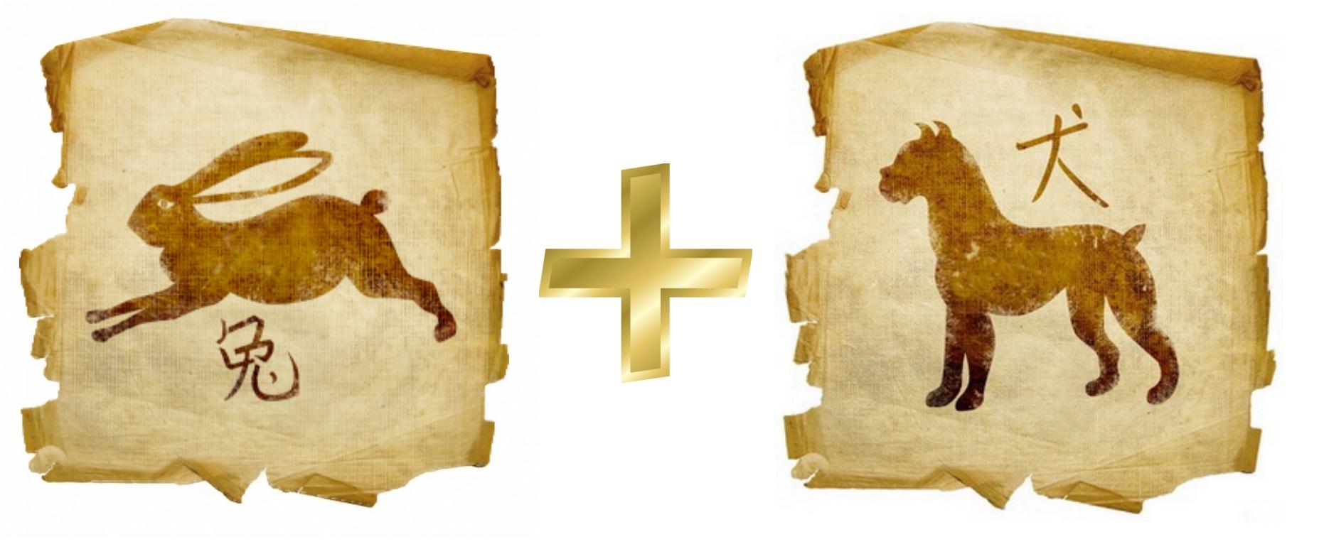 Кролик и Собака: гороскоп совместимости в любви