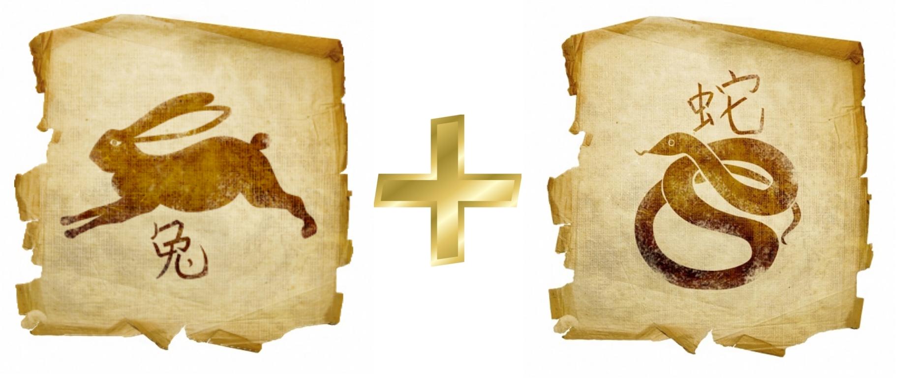 Кролик и Змея: гороскоп совместимости в любви
