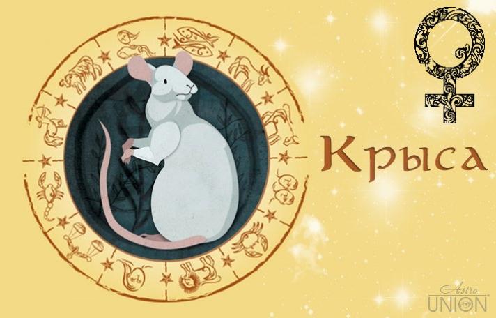 Женщина Крыса (Мышь) в любви. Характеристика и гороскоп рожденных в этот год