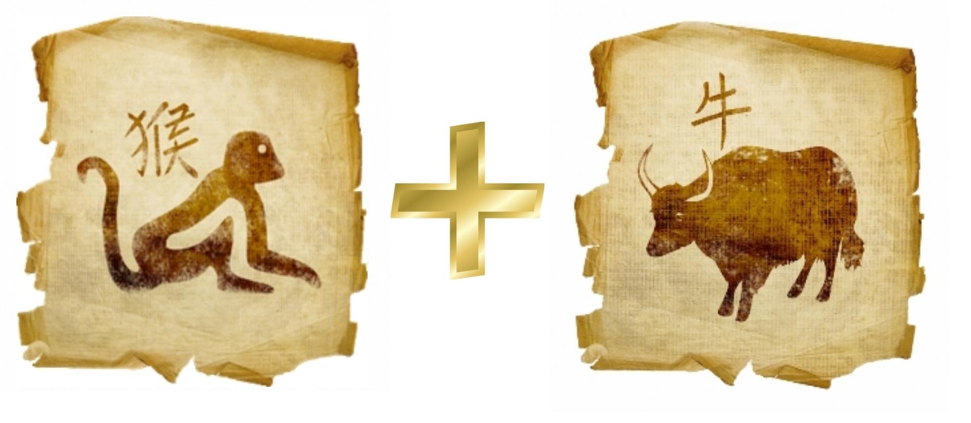 Обезьяна и Бык (Вол): гороскоп совместимости в любви